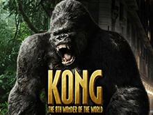 King Kong от Playtech – электронный автомат с бонусами
